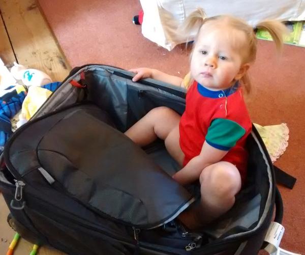 Robin in my bag.